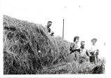 Raymond Bristow and Marie Schanck help Gordon make hay, 1917.  91.17.46