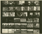 Contact print of 1976 archeological field dig along Mississippi River in Illinois
