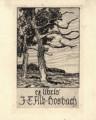 J. T. Alb. Hosbach, two trees