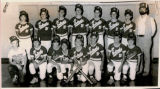 Lowpoint-Washburn Bobcat Baseball Team 1985