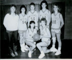 1988 Lowpoint-Washburn Varsity Girls Basketball Team