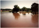View of Galena River Flood of 1993 in Illinois Central Railroad Depot parking lot