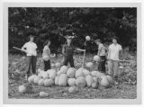 Eureka Pumpkin Festival Queen and attendants pitching pumpkins, 1949.