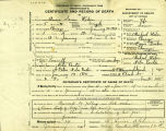 Certificate of Death - Physician's Form: Undertaker's Certificate and Record of Death of Anna...