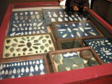 Arrowhead Collection